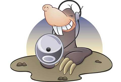 Skype服务器更新引起用户对网络窃听的担忧